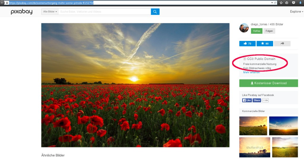 Bildlizenz-Tulpen